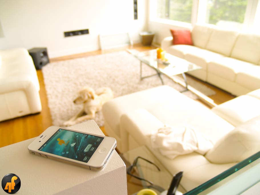 Stay in a luxury high tech home bed and breakfasts for for High tech luxury bed