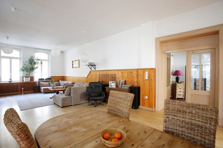 Huge, luxurious and cozy apartment! - Kassel - Apartemen