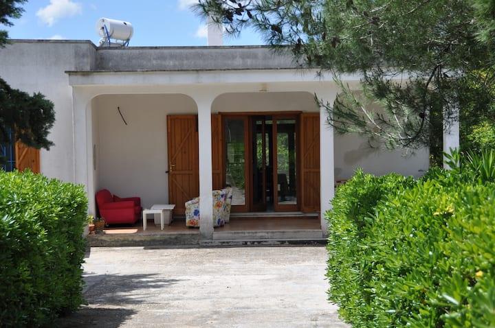 Villa Fenice - Spacious private villa with pool.
