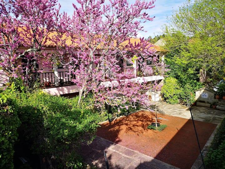 Casa da Varanda    Charme na Beira Alta