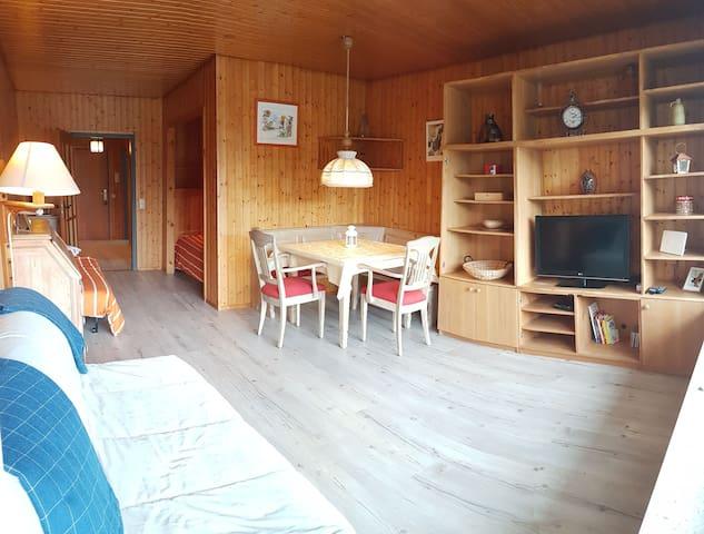 Appartement spacieux proche lac et centre ville
