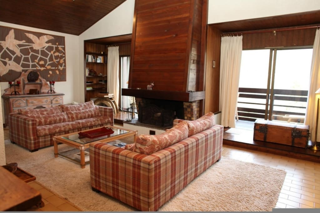 Nice Chalet-Style Living Room with large window