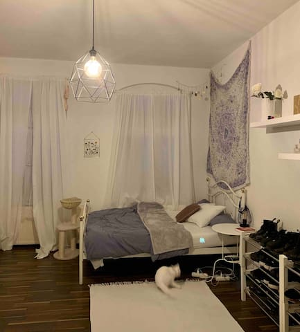 Cute room, in the heart of Friedrichshain