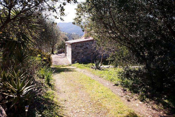 Zia Mura - Cuglieri - House