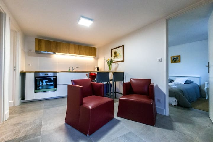Superbe Appartement face à l'hôpital saint Eloi - Montpellier - Departamento