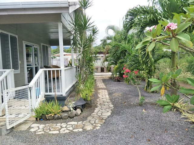 front porch with sliding door entrance and tropical green garden