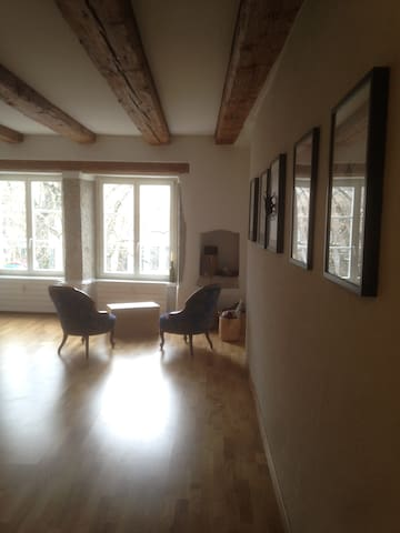 Cozy apartment in the most beautiful baroque town - Solothurn - Appartement
