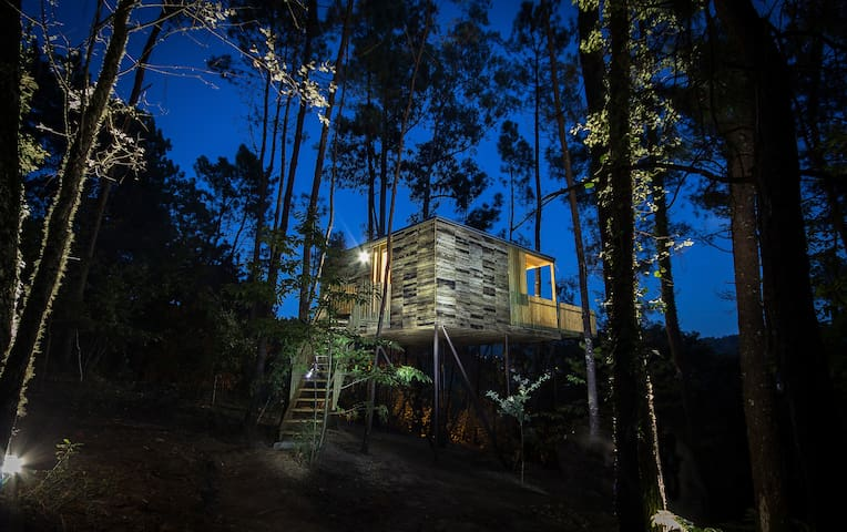 Tree house ( Albán cabin ) - Outes