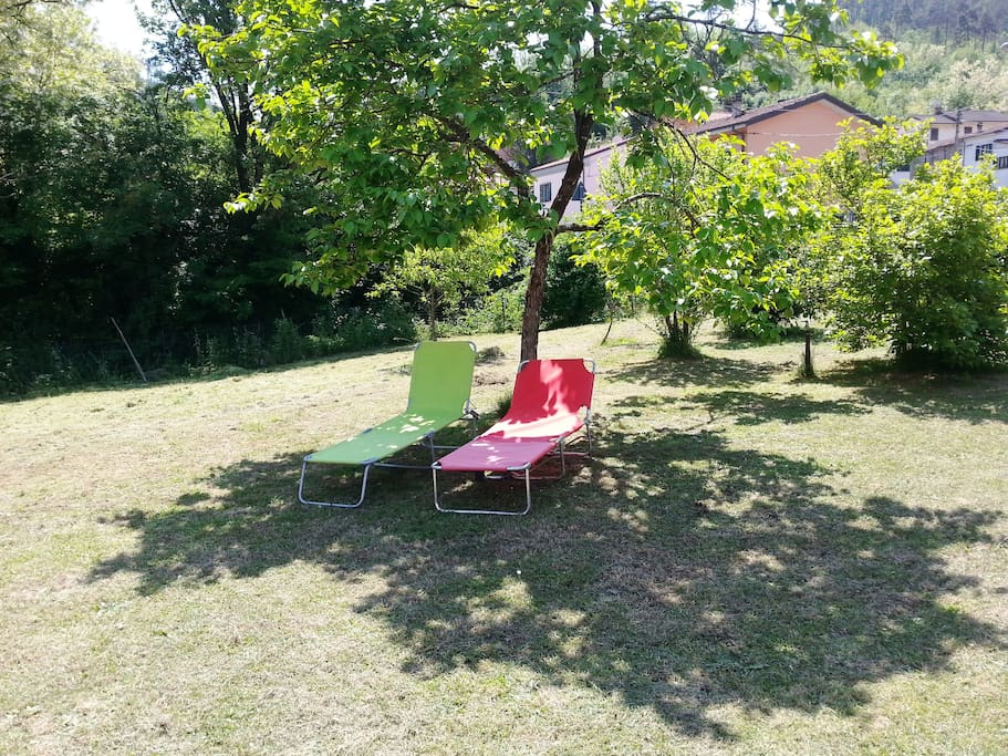 Relax sotto l'albero