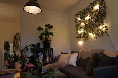 Cosy one room apartment