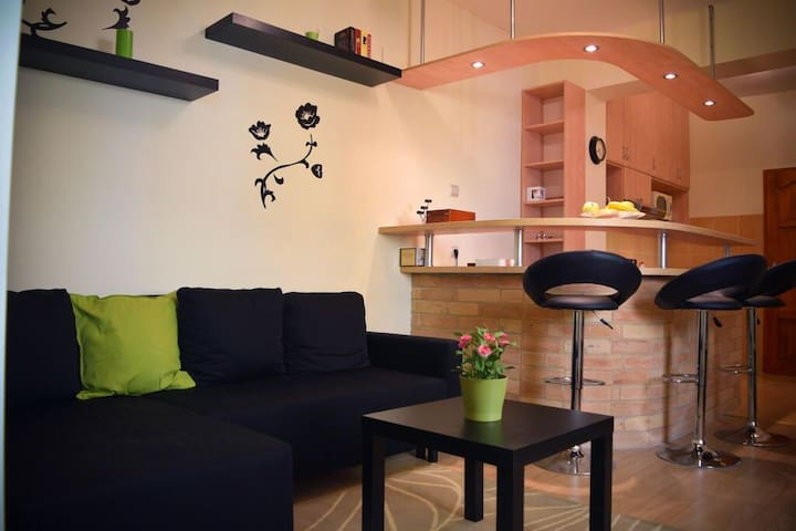 Cozy Little Apartment In Downtown - Szeged - Leilighet