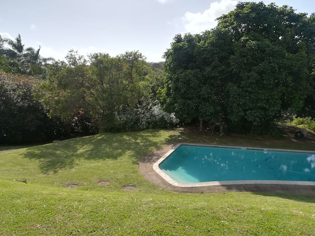 Private pool area for guests with various braai / barbecue facilities. Arrangements can often be made with the owner for driving, day care and transit arrangements.