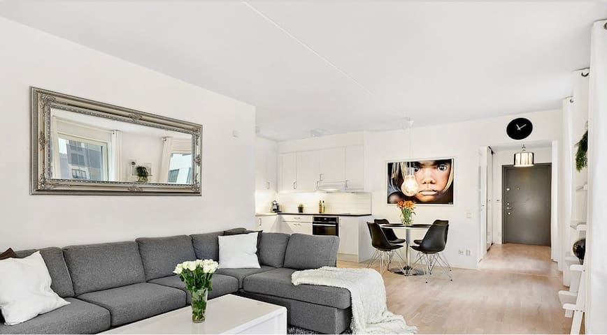Modern Apartment in Stockholm (Friends Arena/ MOS)