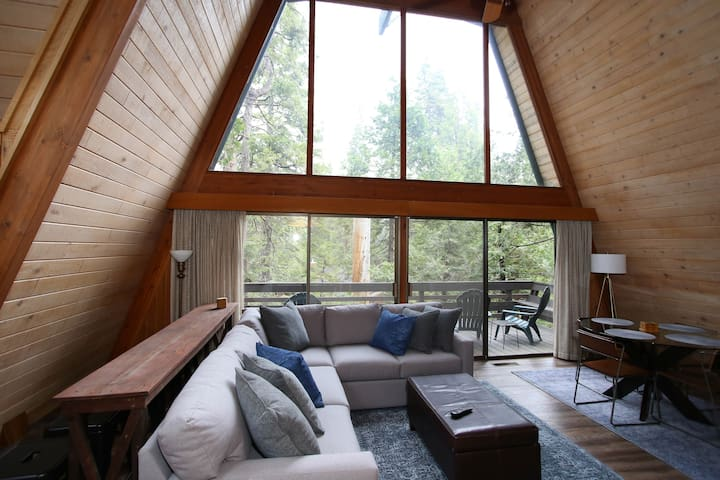 Glass Wall of Majestic Forest Views