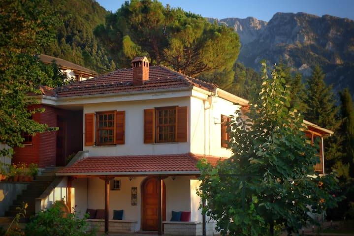 Penelope's house - Kónitsa - Ev