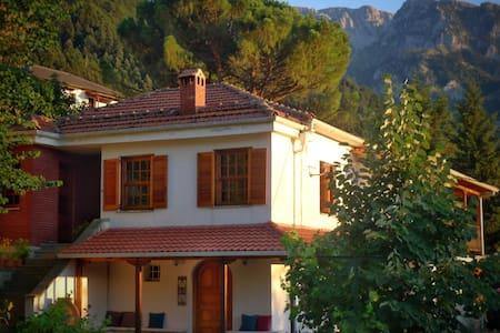 Penelope's house - Kónitsa