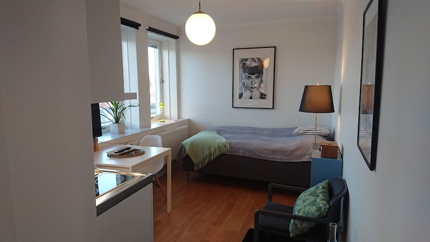 1 Bedroom apt, City center of Södertälje