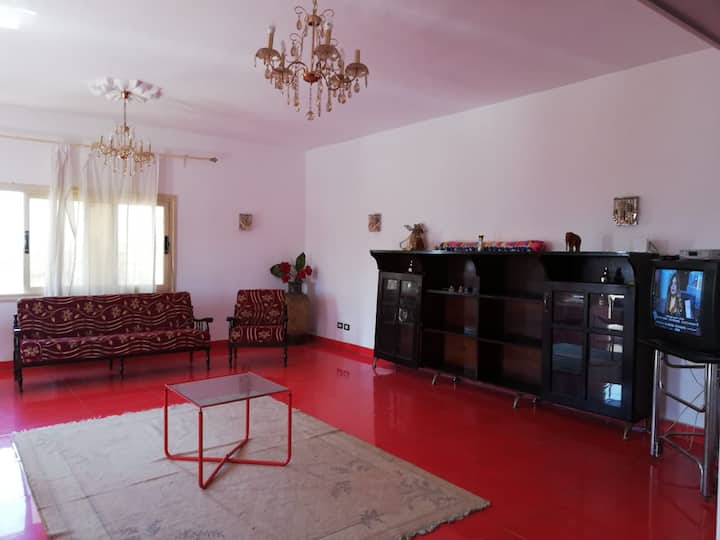 Big flat in New Cairo near airport+tour