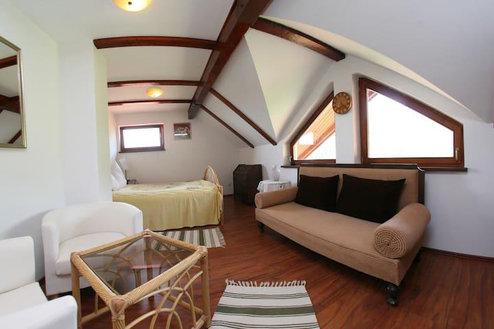 Private Bedroom 5 in Vila Anastasia - Săcărâmb - Villa