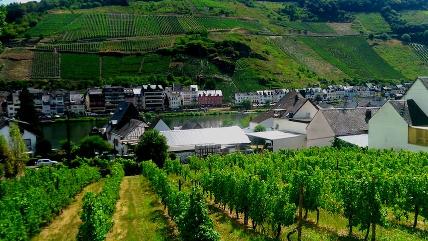 **** Mosel view, modern apartment