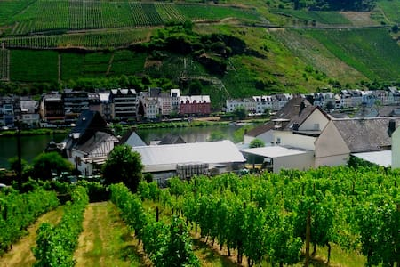**** Mosel view, modern apartment - Zell (Mosel)