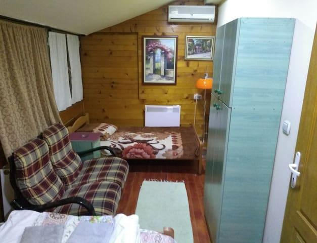 Vila Aleksandar (Room 5)