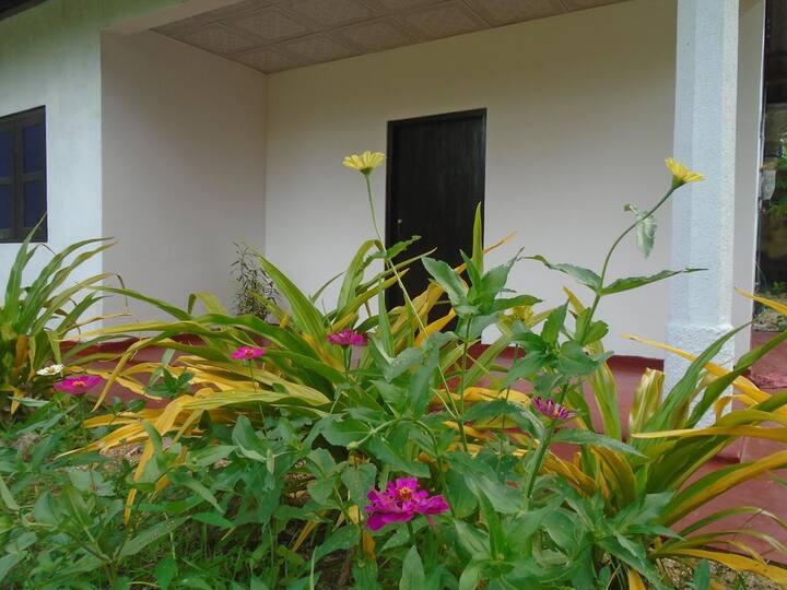 Blue lotus villa