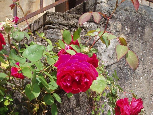 la fontaine du hameau - Mancey - Casa