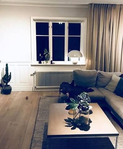 Cosy livingroom with room for many people in the big sofa