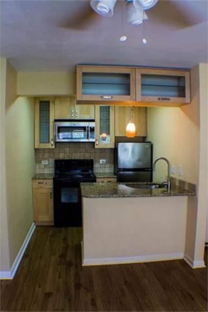 Routinely DISINFECTED! Cozy condo near downtown!