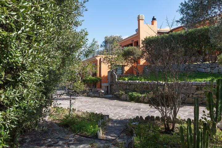 Splendida Villa immersa nel verde per 8 persone