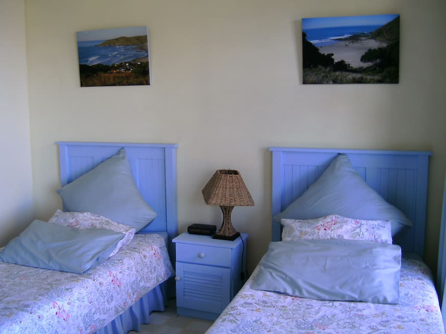 Shelley beds
