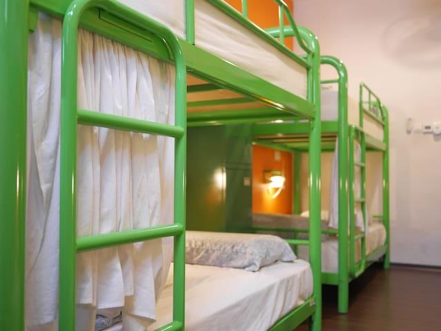 Beary's 10 Bed Mixed Dorm