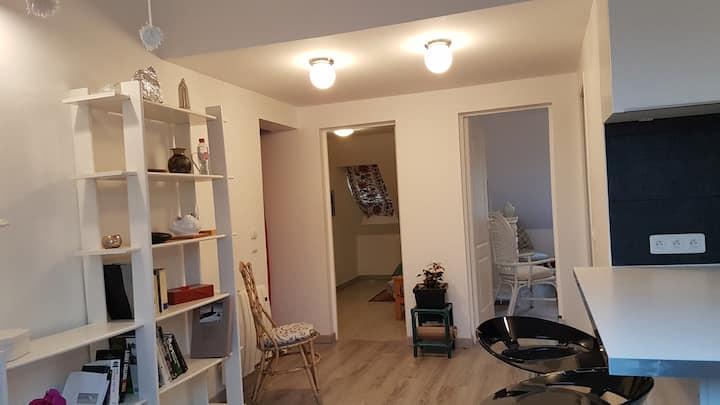 Bel appartement paisible pour 3 personnes.