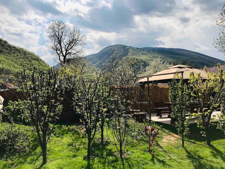 •Country Room in Retezat•Transilvania•