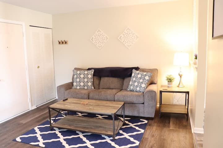 STERILIZED SPOTLESS cozy condo fully furnished!
