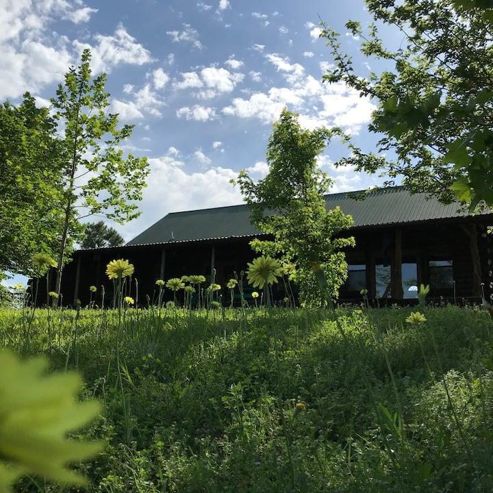 Washita River Cabin - Turner Falls/ Davis