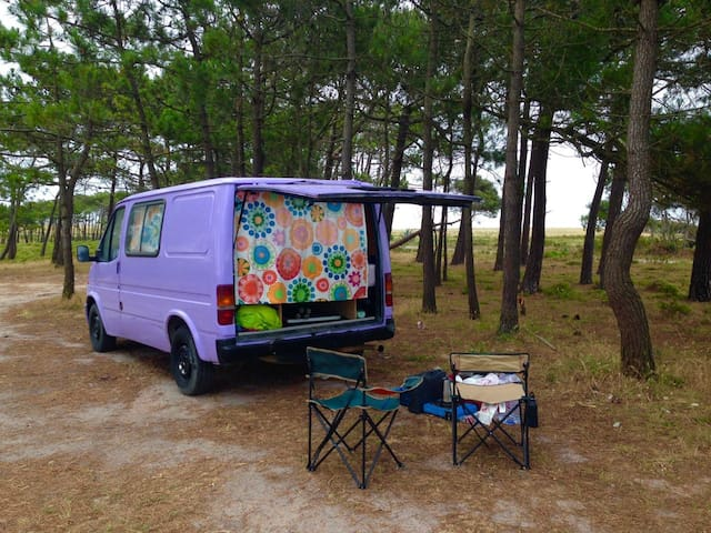 Be free, discover Portugal and camp in my van!