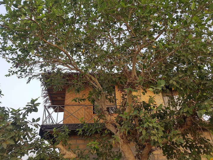 ARANYA ECO FARM - Tree Room