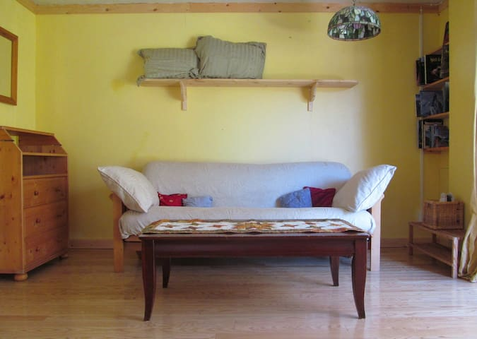 Pull-out couch in the living room