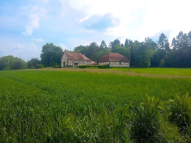 Altes Forsthaus Wehnerts, Schlitz, Vogelsbergkreis - Schlitz - Huis