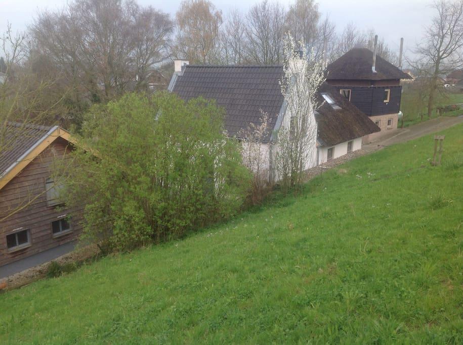 Uitwaaieren in de uiterwaarden huizen te huur in opijnen for Te huur in gelderland