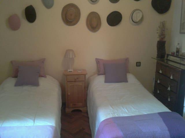 Habitación doble ctro Segovia - Segovia - House