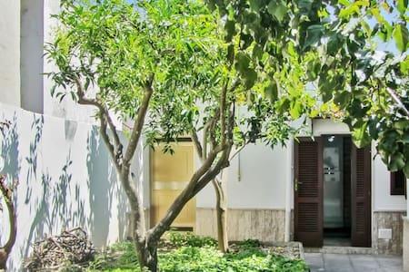Beautiful house with garden - Marittima