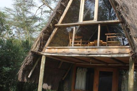 Oasis Eco Camp Lake Elementaita Muthithi cottage