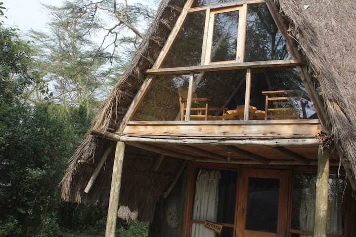 Oasis Eco Camp Lake Elementaita Muthithi cottage