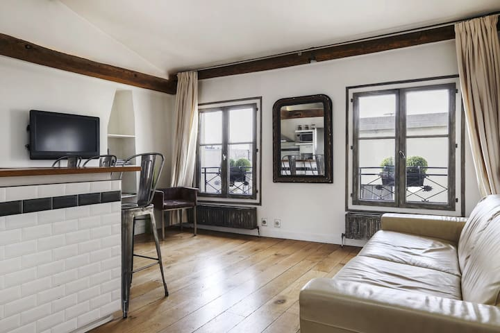 Gorgeous 1 Bedroom in the heart of Le Marais