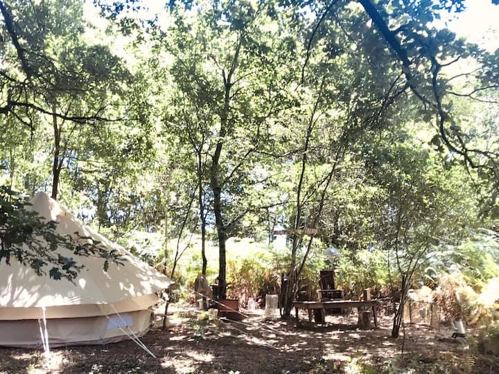 Tente Trappeur en Forêt - 25 min Puy du Fou