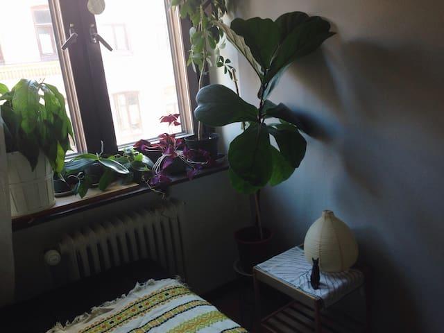 Rum på Nordhemsgatan i Linné - Gothenburg - Apartment