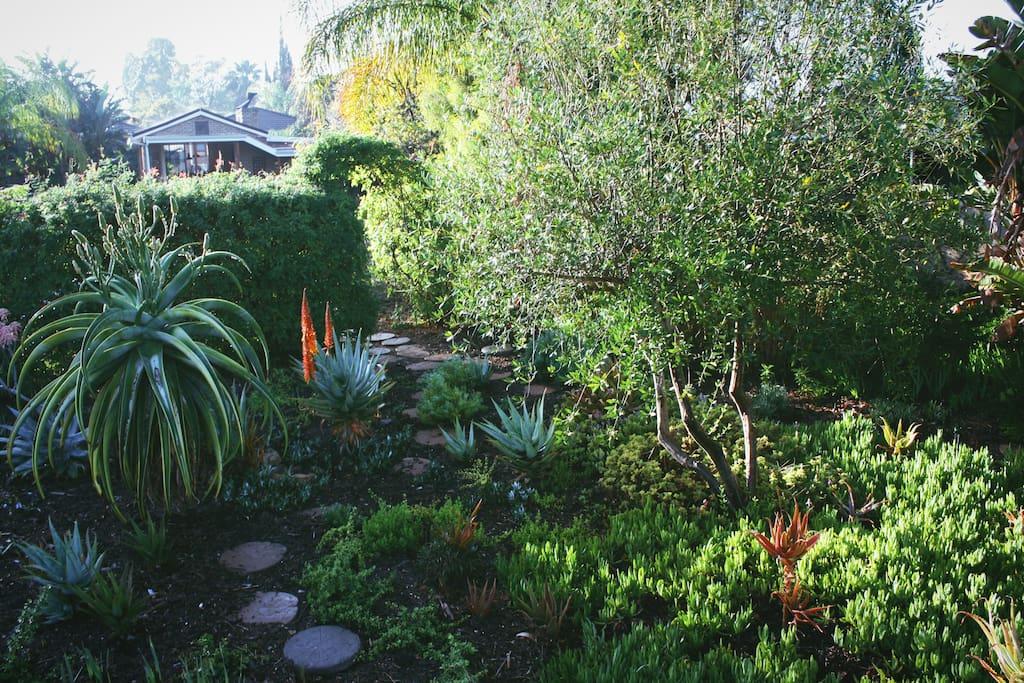 Beautiful lush gardens